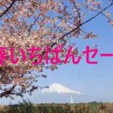 ♬春いちばんセール♬
